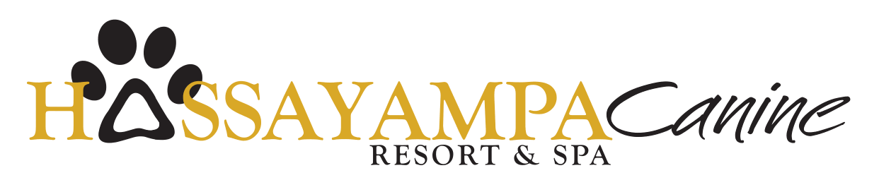Hassayampa Canine Resort & Spa